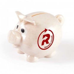 Worlds Smallest Pig Eco Coin Bank